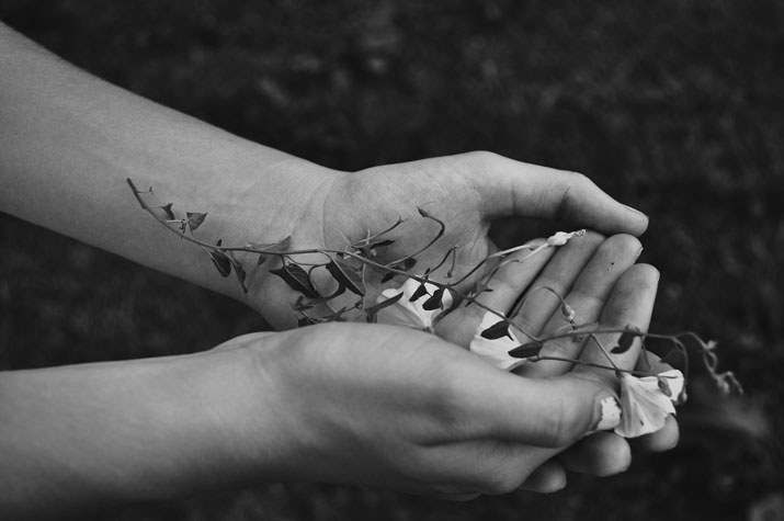 kristina-bychkova-photography-black-white-hands-plant-dirt-holding