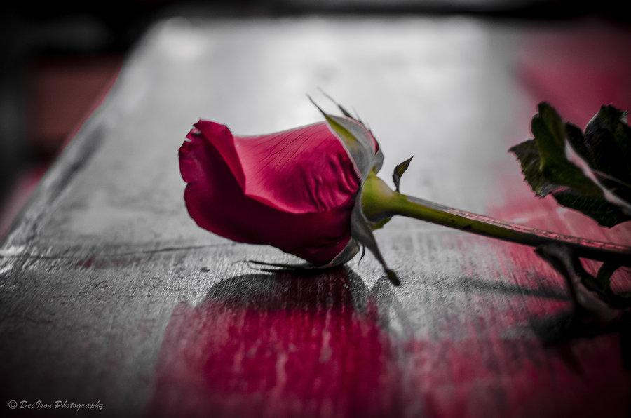 broken_love______by_deoiron-d5mxsec1